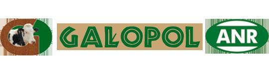 Gałopol